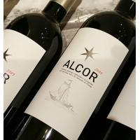 Alcor 2012